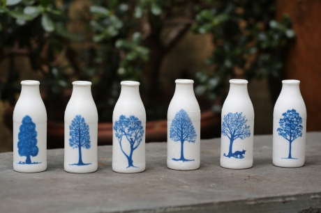 tree bottles KS__8882