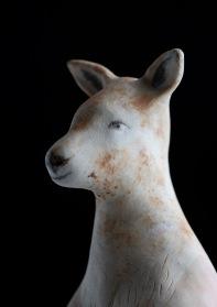 Domestic Kangaroo God_012small!